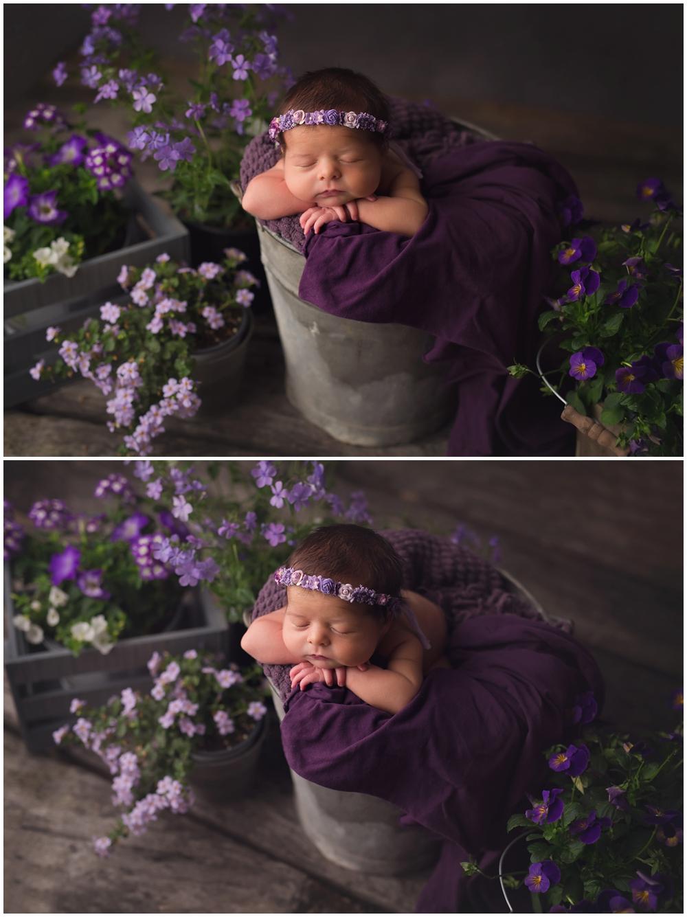 Kellie Carter Newborn Photographer KY_0001